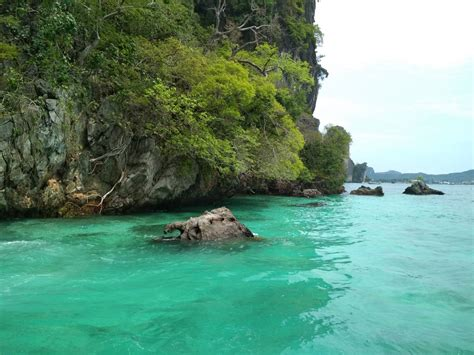 boat tour from phi phi island phi phi islands day tour by speedboat semplice phuket tours