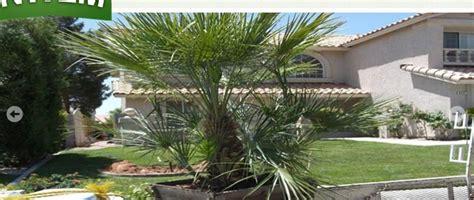 Landscaping In Las Vegas Nv Northwest Landscape Northwest Landscape Services