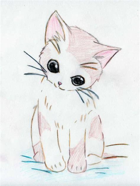 Anime Kitten by Anime Kitten Www Imgkid The Image Kid