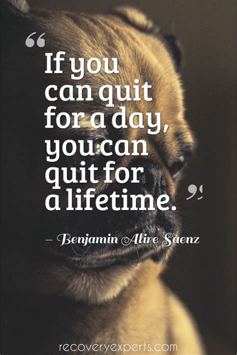 Can You Detox To Quit by 126 Best Motivational Quotes Images On