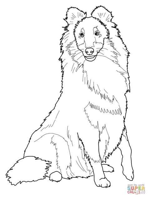 sheep dog coloring page 86 coloring pages of sheep dogs portuguese water