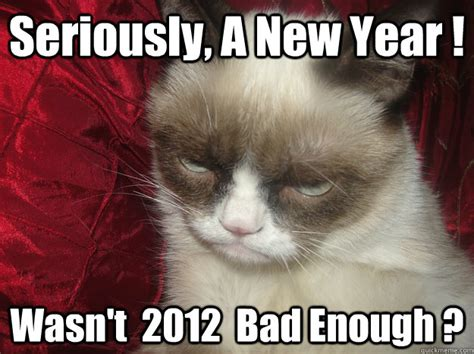 new year caption seriously a new year wasn t 2012 bad enough are you