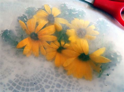 How To Make Wax Paper Flowers - how to perfectly press flowers pioneer settler