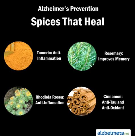 preventing alzheimer s alzheimer s factors prevention steps and foods that prevent or alzheimer s recipes for alzheimer s prevention diet essential spices and herbs books my caregiving friend by tim brennan