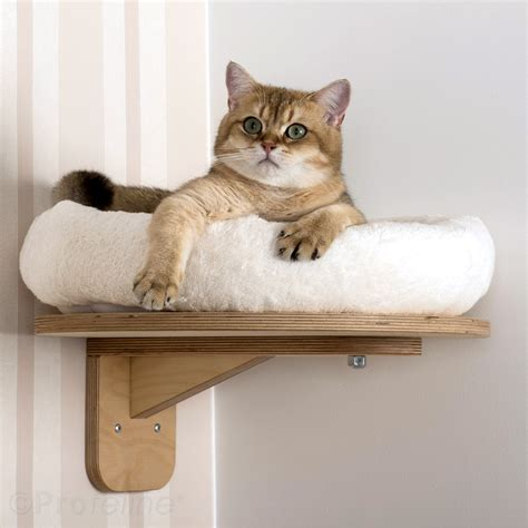 cat wall furniture wall mounted with top level platform ae2 wall lounger
