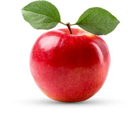 pomme de si鑒e social la pomme centerblog