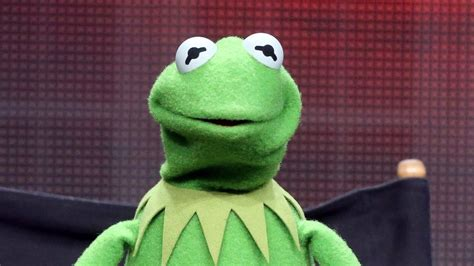 Kermit The Frog Meme by Why Kermit The Frog Memes Are So Popular According To