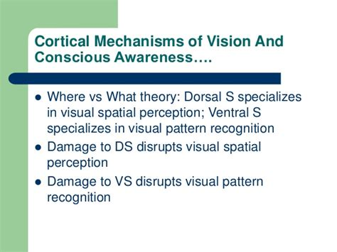 Pattern Recognition Visual Perception | 160 report