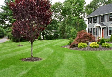 landscaping images lawn care property maintenance south bend in