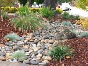 low water landscaping low maintenance is what everyone wants this front yard