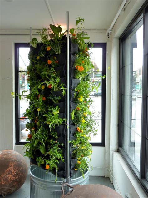 aquaponic vertical vegetable garden plants  walls