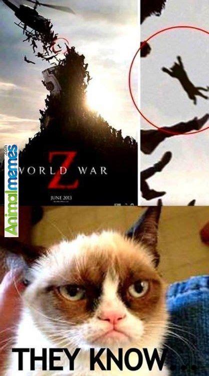 Dank Cat Memes - cat memes grumpy cat has been spotted cat memes pinterest grumpy cat memes and cat
