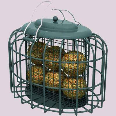 arunachala birds: ways to deal with bully birds