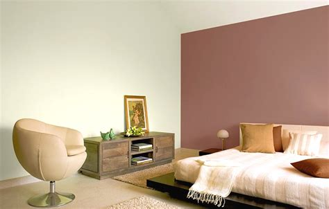 asian paints colour shades for living room hawk