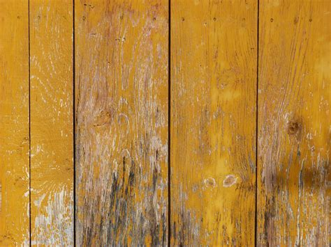 Free Images : texture, plank, leaf, floor, wall, yellow