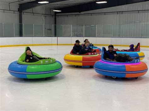 garden offers fun bumper cars  ice  michigan