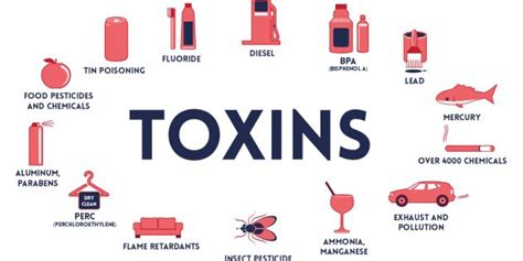 How To Detox From Triclosan by Understanding Toxins And Toxicity Look Feel Better Today