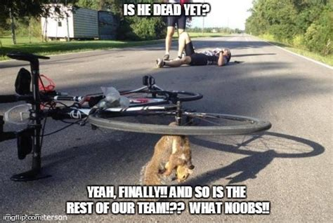 Dead Squirrel Meme - image tagged in dead squirrel imgflip