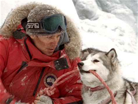 eight below names eight below dogs names picture image by tag