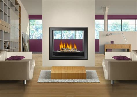 See Thru Gas Fireplace Inserts by Napoleon Hd 81 See Thru Gas Fireplace