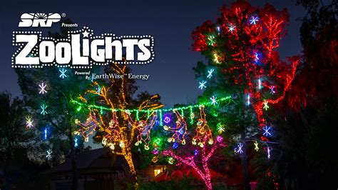 zoo lights 2017 seattle light up the holidays best lights of couture in