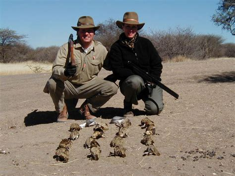 how to a to bird hunt bird in namibia africa