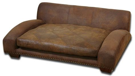 leather sofa dogs uttermost comfort for your pet inside the designers studio