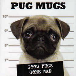 pug mugs book pug mugs book findgift