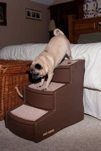 steps for dogs to get on bed stairs for dogs4 reasons to invest in stairs for dogs to get on a bed stairs