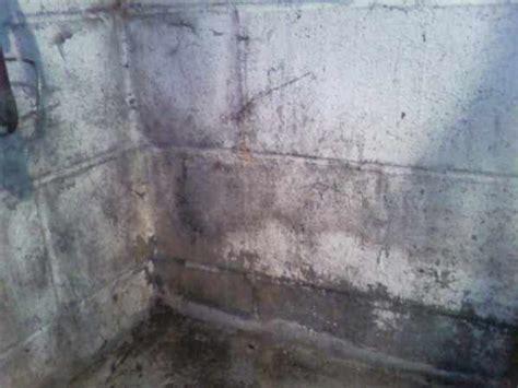 mold on basement walls cinder block basement leaking through cinderblock