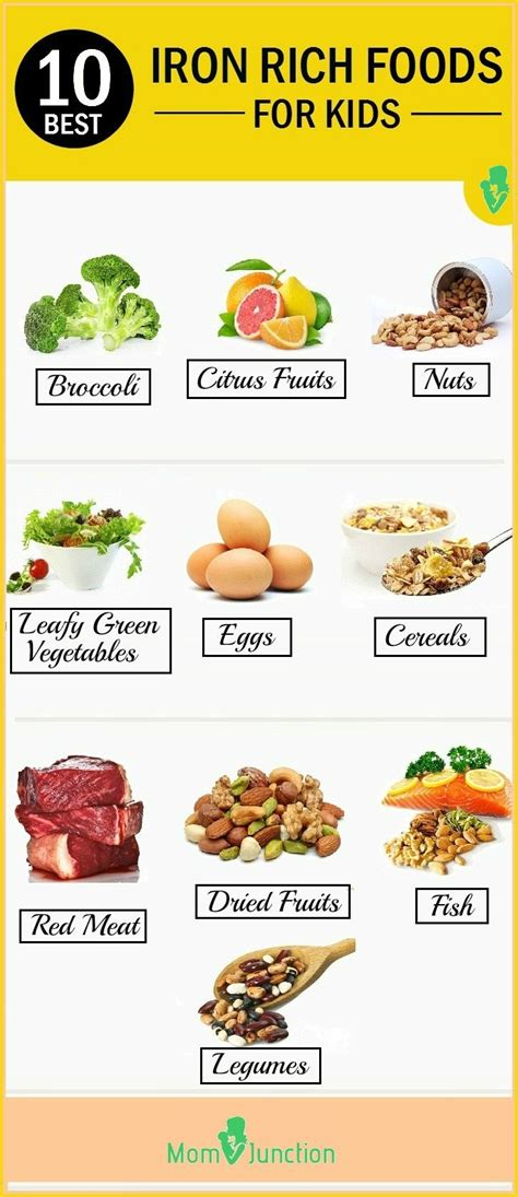 Iron Detox Symptoms by Best 25 Iron Deficiency Anemia Ideas On
