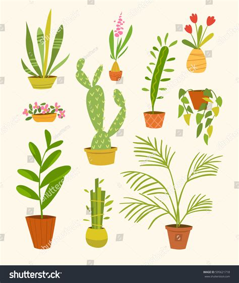 different kinds of house music vector set different indoor plants pots stock vector 595621718 shutterstock