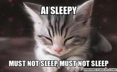 sleepy cat memes image memes  relatablycom