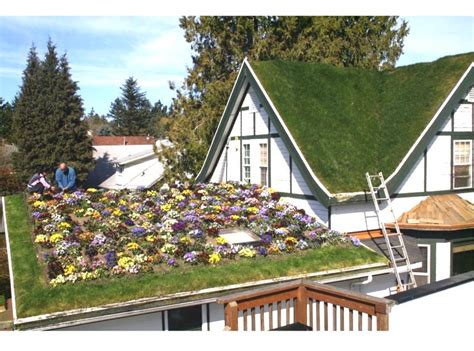 greenroofs com projects troy s green roof