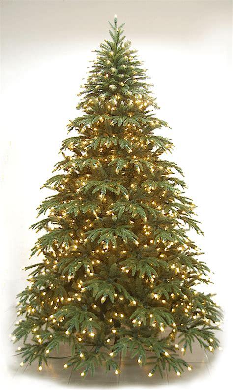 highland fir neuman tree m c twinklin s christmas