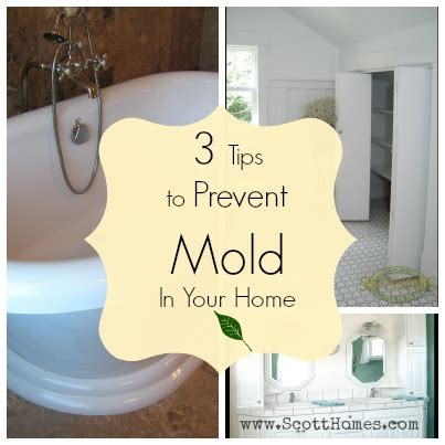 How To Prevent Mold In House by 3 Tips To Prevent Mold In Your Home Building Green
