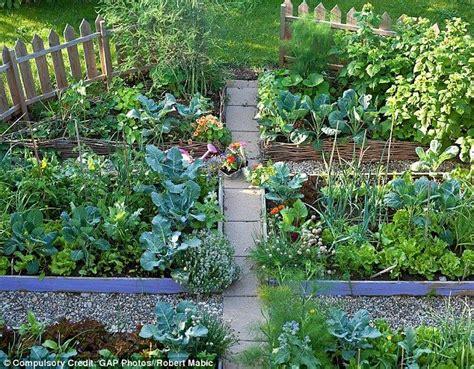 Garden Allotment Ideas Best 25 Allotment Ideas Ideas On When To Plant Garden Vegetable Garden Planters