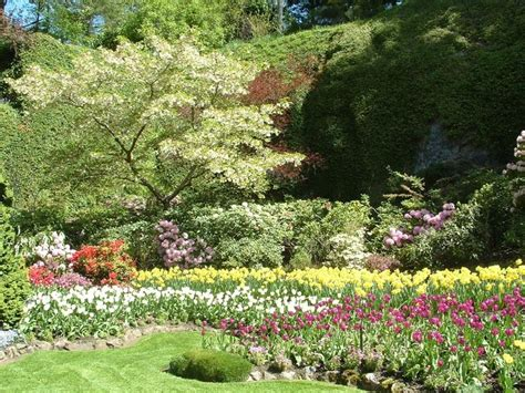 giardini fioriti giardini fioriti progettazione giardini fiori in giardino