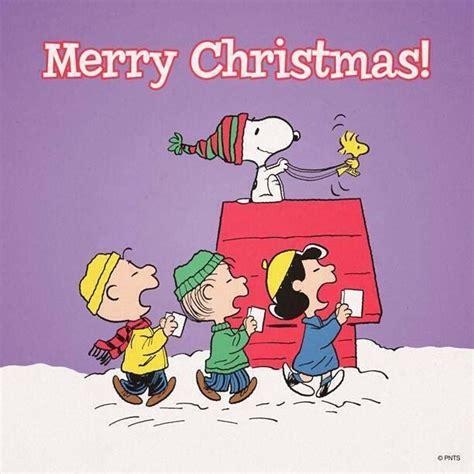 merry christmas humor  holidays pinterest