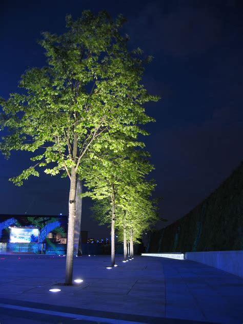 tree lighting tree lighting lights