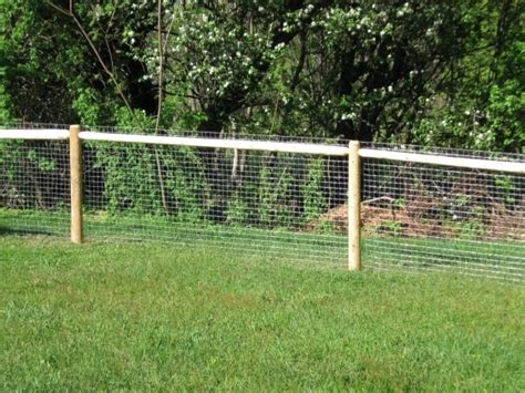 backyard fencing ideas for dogs outdoor fencing for dogs fence ideas