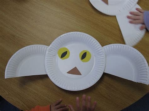 Paper Plate Snowy Owl Craft - 1000 images about animals polar on arctic