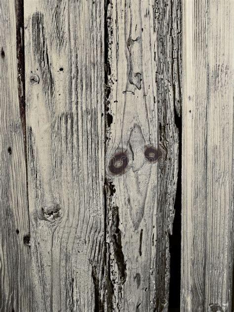 rustic wood background stock image image  organic