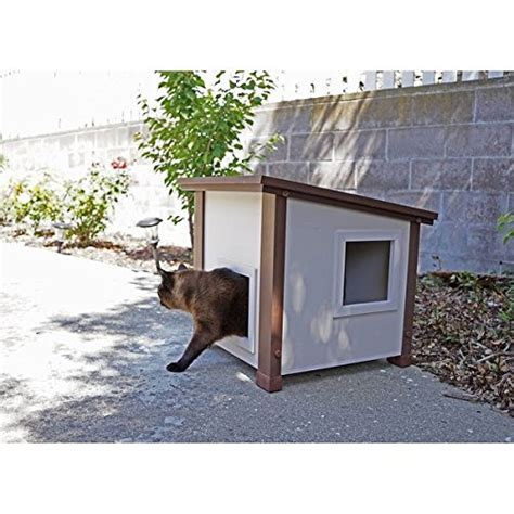 feral house feral house 28 images cat house best images collections hd for gadget windows mac