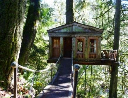 tree house point pacific nw travels and tails up in a tree house at treehouse point