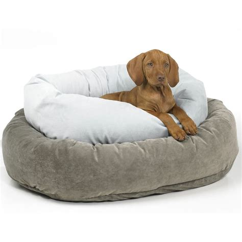donut dog bed 6 beds for dogs who love to snuggle modern dog magazine