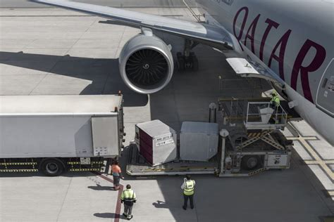 cheery cherry season for qatar airways cargo logistics business 174 magazine