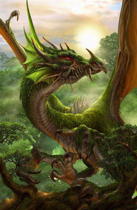 wyng the erth dragons 2 books earth dragons