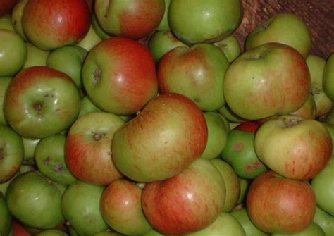 about cooking apple