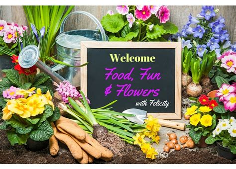 flower food without food flowers by felicity adventures of a flower